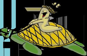 Schildkrötenreiten